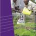 Прирачник – програма за животната средина, активности и факти